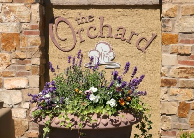 004-48622-Orchard-WEB